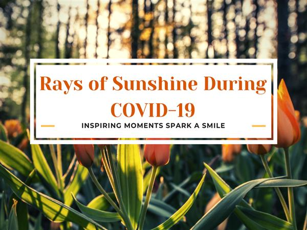Rays of Sunshine During Covid-19